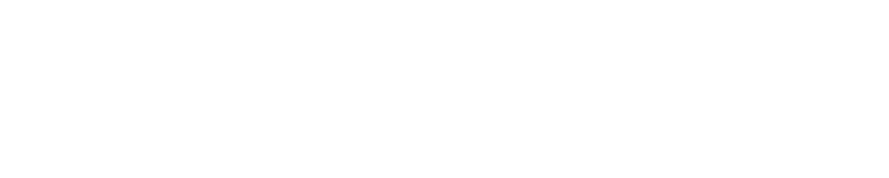 New York State Association for Infant Mental Health